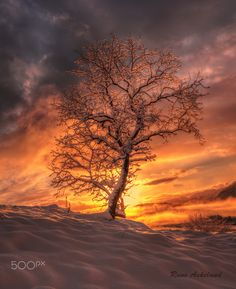 Backlight ... Winter Sunrise | by RuneAskeland on 500px