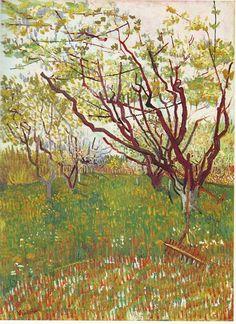 Kirschbaum, 1888 Van Gogh