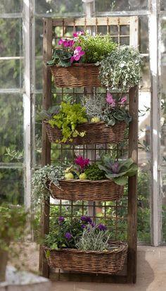 Charming Cottage Garden display in tiered baskets. Indoor Gardening Supplies, Container Gardening, Urban Gardening, Gardening Hacks, Dream Garden, Garden Art, Garden Design, Herb Garden, Landscape Design