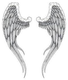 Angel Wings Tattoos  High Quality Photos And Flash Designs Of