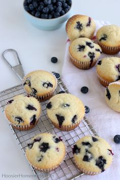 Blueberry Cinnamon Streusel Muffins recipe by Molly Adams Blueberry Yogurt Muffins, Gluten Free Blueberry Muffins, Lemon Muffins, Blue Berry Muffins, Cinnamon Streusel Muffins, Tater Tot Breakfast, Simple Muffin Recipe, Oat Smoothie, Homemade Muffins