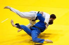 Image result for workouts for judo