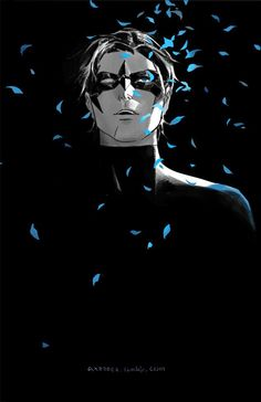 Nightwing by Dan Lanh
