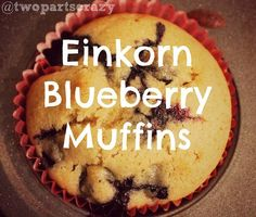 What is Einkorn? Learn about this ancient grain, and a recipe for Blueberry muffins using the Young Living Einkorn Pancake and Waffle Mix.
