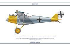 Pfalz D.III Jasta 56