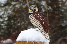 northern hawk owl pattern. Tons of fantastic felt patterns for animals on here, so cute!