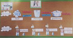 Buckenbergschule Pforzheim: swimming and sinking - science elementary Elementary Science, Science For Kids, Life Science, Elementary Schools, School Teacher, Primary School, Easy Detox, Blogger Themes, Classroom Management