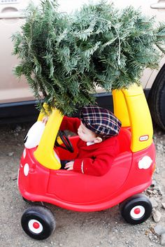 Family kids Christmas Photo card bring a tree home on car