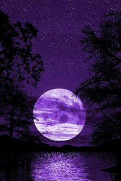 20 Beautiful Wallpapers for iPhone 4 Dark Purple Aesthetic, Violet Aesthetic, Lavender Aesthetic, Sky Aesthetic, Aesthetic Colors, Aesthetic Roses, Purple Wallpaper Iphone, Night Sky Wallpaper, Galaxy Wallpaper
