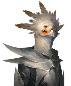 Avian_normal_06.png (330×400)