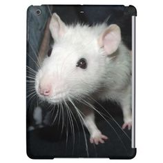 friendly rat cover for iPad air