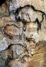 Parietal Art at Chauvet and Lascaux |Lascaux Cave Paintings Bear