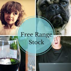 Free Stock Photos: 74 Best Sites To Find Awesome Free Images – Design School Stock Photo Sites, Free Stock Photos, Free Photos, Image Sites, Best Sites, School Design, High Quality Images, Royalty Free Images, Digital Camera