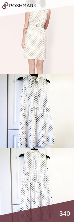 Loft Polka Dot Dress Loft linen polka-dot collared dress in size 0 PETITE. Elastic/cinched waist in the back. In excellent condition. This dress is so stylish and cute! LOFT Dresses