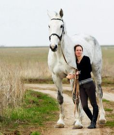 I would love to have my Percheron back! Such a loving gentle giant
