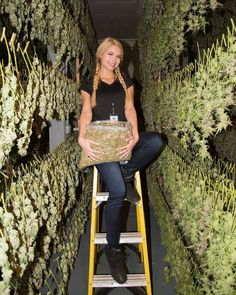 Who wants to blaze with her? We have a mighty large collection of cannabis! #thc #cbd #cannabis #weed #420 #dank #weedporn #weedgirls