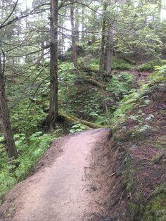 Alaska (Parte 2)