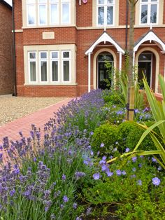 Ealing show house, front garden.