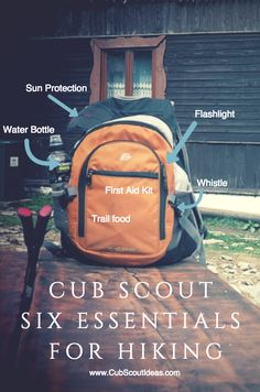What area of education would I need to start a kind of group like the boy scouts?