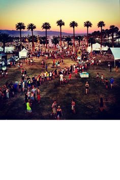 do me a favor and drop me off at a festival and never pick me up <3 #festivals #Coachella  #usa