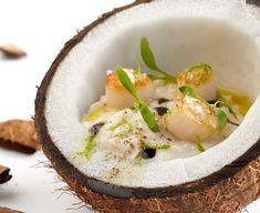 Creamy coconut rice, served in a half shell with sepia, tamarind & ginger by José Andrés - FOUR Magazine ! Tamarindo, Wine Recipes, Great Recipes, Thai Recipes, Miami Spice, Coquille Saint Jacques, Good Food, Yummy Food, Party Finger Foods