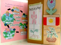 Lapbook : ciclo de las plantas Lap Books, Mini Books, Plant Science, Life Science, Science And Nature, Flower Chart, Spanish Teaching Resources, Interactive Journals, Science Projects For Kids