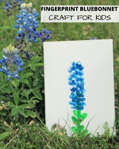 The bluebonnets in Texas are fading, so make them last with this super cute fingerprint bluebonnet craft for kids. So fun and adorable! Cute Kids Crafts, Vbs Crafts, Bunny Crafts, Toddler Crafts, Flower Crafts, Preschool Crafts, Children Crafts, Creative Crafts, Texas Crafts