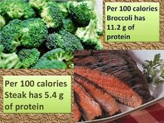 Meat is not the only source of protein.  By volume, broccoli has more protein than steak.  (But I still love steak.)