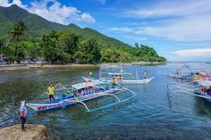 The Puerto Princesa Underground River In Palawan is one of the of Nature, but is it worth it? Check out our tour timeline and opinion. Puerto Princesa, Swimming Holes, Palawan, Dns, Anonymous, Philippines, Trips, Public, River
