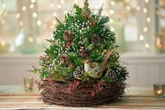 Learn how to make a DIY Christmas tree that's perfect for your table, desk or small area. Add some extra flair with our Christmas tree decoration ideas! Fruit Christmas Tree, Tabletop Christmas Tree, Miniature Christmas Trees, Christmas Flowers, Christmas Tree Ornaments, Christmas Crafts, Christmas Décor, Easter Tree Decorations, Handmade Christmas Decorations