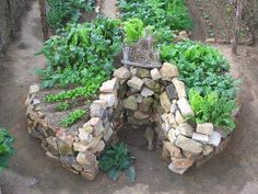 "It's called a ""keyhole"" garden. 3' high and 6' in diameter. Keyhole is a pie slice toward the middle for planting, maintenance, and  access to the compost basket in the middle.  2 Kewl"
