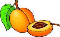 Gourmandises de fées: Liqueur d'abricots express