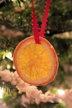 "Christmas tree ""stained glass"" discs made from orange slices!"