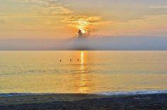 7/28/16. Kitty Hawk, NC, Sunrise.  Photographer credit:. Barbara Ann Bell.