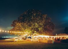 outdoor wedding lighting.. under the mighty oak