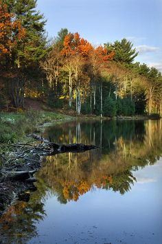 Colorful autumn landscape and beautiful reflection at Oakley Corners State Forest shortly after sunrise, located in the towns of Newark Valley and Owego in eastern Tioga County, NY USA.   SHOP MY COMPLETE COLLECTION AT:  www.rollosphotos.com   FOLLOW ON:  Facebook: rollosphotos  Twitter: ChristinaRollo  Pinterest: rollosphotos