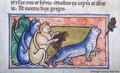 Photo:  Workshop Bestiary, 1185  THE HISTORY OF THE CAT IN THE MIDDLE AGES (PART 5)