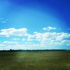 #cremadelcielo #cielo #sky #bluesky #instagrammers #picoftheday #fotodeldia #travel #daylife #buenosaires #argentina #provinciadebuenosaires