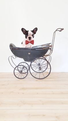 Your place to buy and sell all things handmade Shabby Chic Cottage, Shabby Chic Homes, Dog Stroller, Baby Strollers, Blanket Holder, Baby Buggy, Magazine Holders, Baby Carriage, House And Home Magazine
