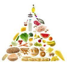 """Pour faire un repas équilibré, avant tout, il faut """" bien """" connaitre les aliments : Voici donc un tableau récapitulatif : Le plat principal Viande, poisson ou oeuf Il apportent les protéines qui servent à renouveler nos cellules. 150 grammes par jour..."""