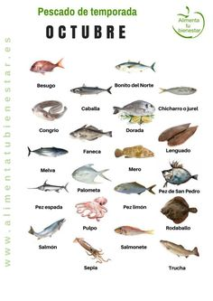 Seasonal fish in October Cooking Tips, Cooking Recipes, Healthy Recipes, Fish Chart, Homemade Fishing Lures, Seasonal Food, Savoury Cake, Kitchen Recipes, Healthy Nutrition