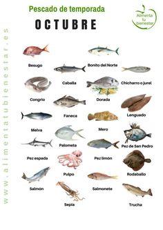Seasonal fish in October Kitchen Recipes, Cooking Recipes, Fish Chart, In Season Produce, Seasonal Food, American Food, Healthy Nutrition, Stevia, Soul Food