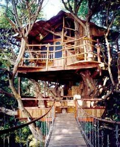 Looking to add a little zing to your next vacation? Staying in a treehouse might not be high on your list, afterall, treehouses are just for children...