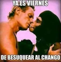 New Memes, Dankest Memes, Jokes, I Started A Joke, Wolf Tattoo Sleeve, Quotes En Espanol, Mexican Humor, Frases Humor, Dark Quotes