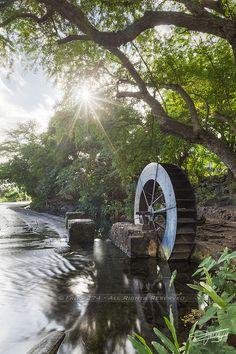 Moulin du tour des roches - Saint-Paul Volcan Reunion, Paradis Tropical, Mauritius Island, Ocean House, Island Girl, Le Moulin, Plan Your Trip, Amazing Destinations, Wonderful Places