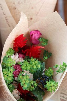 Planter Pots, Succulents, Flowers, Succulent Plants, Royal Icing Flowers, Flower, Florals, Bloemen, Blossoms