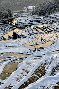 Snowy Terraces 雲和梯田 | Flickr - Photo Sharing!