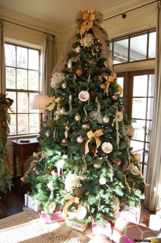 A rich Christmas tree with white and gold bow decorations and simple ornaments