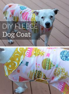 Sewing Animals Patterns Easy Easy Cut and Sew Fleece Dog Coat! - This easy sewing project can be finished in an afternoon and the result will keep your pup warm through the winter and make for an adorable dog photo op. Shih Tzu, Fleece Dog Coat, Cute Dog Photos, Dog Clothes Patterns, Dog Crafts, Animal Projects, Dog Costumes, Dog Sweaters, Pet Clothes