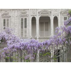 Purple Wisteria Mansion photography Istanbul photos blue Wall decor ($28) ❤ liked on Polyvore featuring home, home decor, wall art, purple wall art, blue home accessories, turkish home decor and photographic wall art
